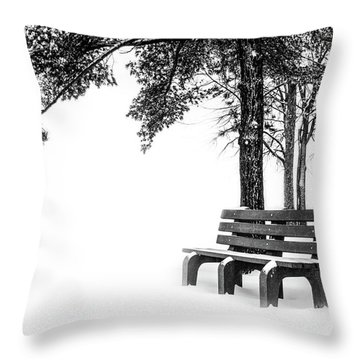 Throw Pillow featuring the photograph Winter Bench  by Michael Arend