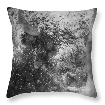 Winter Bison Throw Pillow