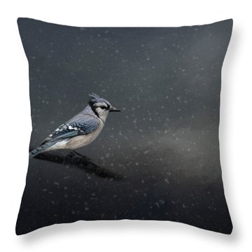 Winter Blues  Throw Pillow