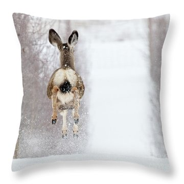 Winter Bounce Throw Pillow