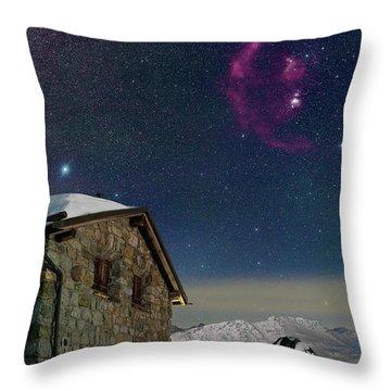Winter Bounty Throw Pillow