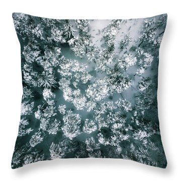 Winter Forest - Aerial Photography Throw Pillow