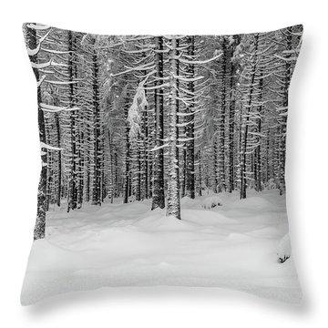 winter forest, Harz Throw Pillow