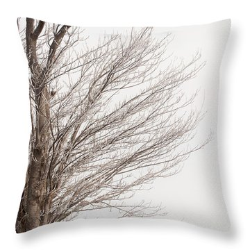 Winter Hoarfrost Throw Pillow