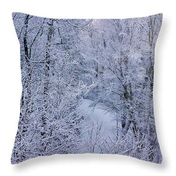 Winter Ice Storm Throw Pillow