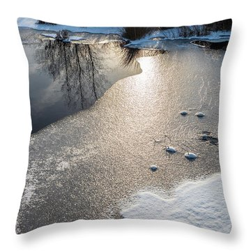 Throw Pillow featuring the photograph Winter Landscape At Whitesbog by Louis Dallara