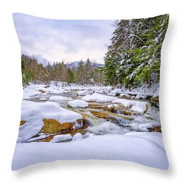Winter On The Swift River. Throw Pillow