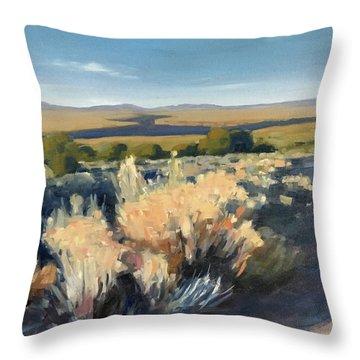 Winter Palette Throw Pillow