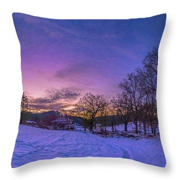 Winter Panorama Throw Pillow