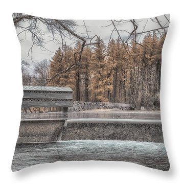 Winter Sachs Throw Pillow