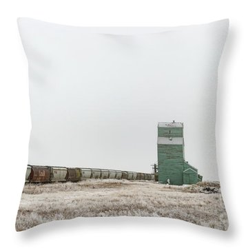 Throw Pillow featuring the photograph Winter Sentinel by Brad Allen Fine Art