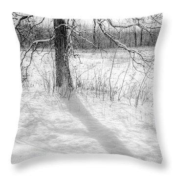 Winter Simple Throw Pillow