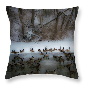 Winter Swim Throw Pillow