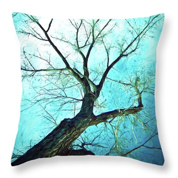 Throw Pillow featuring the photograph Winter Tree Blue  by James BO Insogna