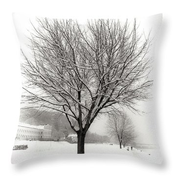 Winter Trees Along The Danube At Ybbs Throw Pillow