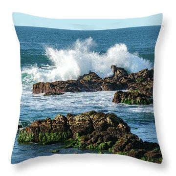 Winter Waves Hit Ancient Rocks No. 2 Throw Pillow