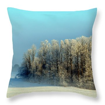 Throw Pillow featuring the photograph Winter's Heavy Frost by SimplyCMB