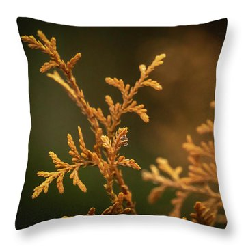 Winter's Hedges Throw Pillow
