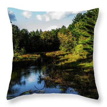 Wisconsin Waterscape Throw Pillow
