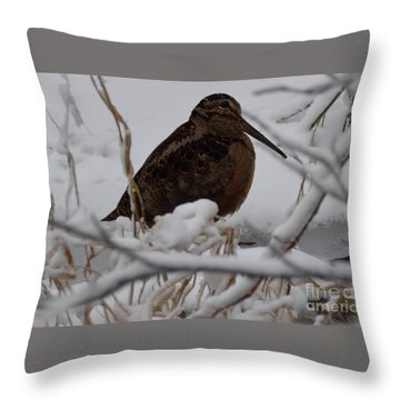 Wishing I Was Down On The Bayou Throw Pillow