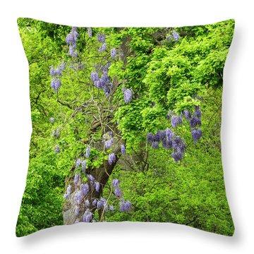 Wisteria And Oak Throw Pillow