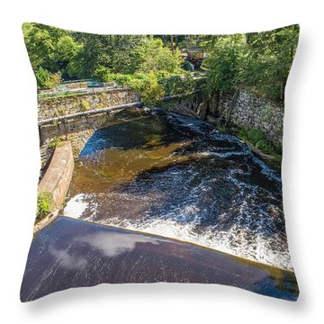 Throw Pillow featuring the photograph Withstanding Time by Michael Hughes