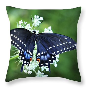 Throw Pillow featuring the photograph Wonder by Michelle Wermuth