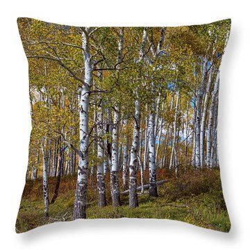 Throw Pillow featuring the photograph Wonders Of The Wilderness by James BO Insogna