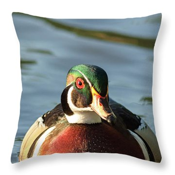 Wood Duck 3 Throw Pillow