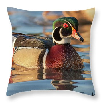Wood Duck 4 Throw Pillow