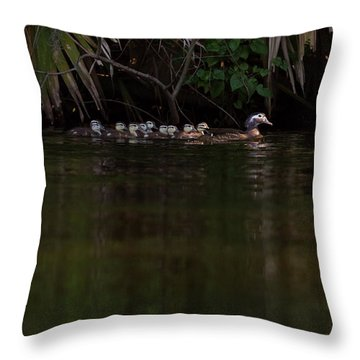 Wood Duck And Ducklings Throw Pillow