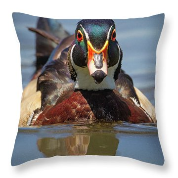 Wood Duck Face First Throw Pillow