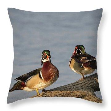 Wood Duck Hangout Throw Pillow