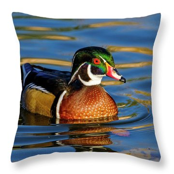 Throw Pillow featuring the photograph Wood Duck by Nicole Young