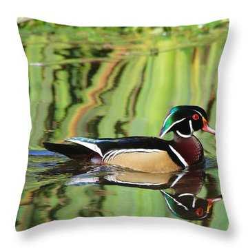Wood Duck Reflection 2 Throw Pillow