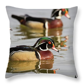 Wood Duck Threesome Throw Pillow
