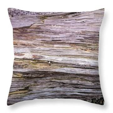 Throw Pillow featuring the photograph Wood Log In Nature No.28 by Juan Contreras