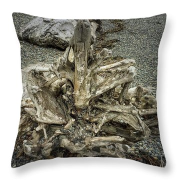 Throw Pillow featuring the photograph Wood Log In Nature No.36 by Juan Contreras