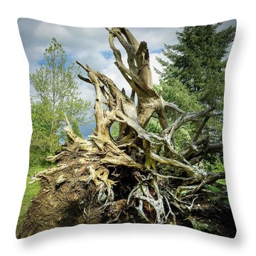Throw Pillow featuring the photograph Wood Log In Nature No.6  by Juan Contreras