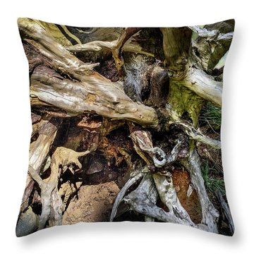 Throw Pillow featuring the photograph Wood Log In Nature No.8 by Juan Contreras