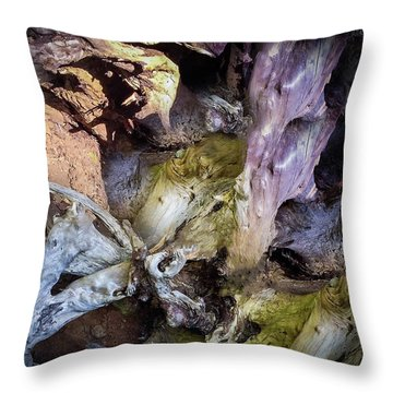 Throw Pillow featuring the photograph Wood Log In Nature No.9  by Juan Contreras