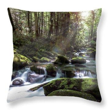 Woodland Falls Throw Pillow