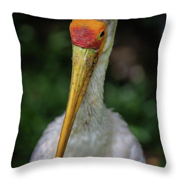 Yellow Billed Storks Throw Pillow