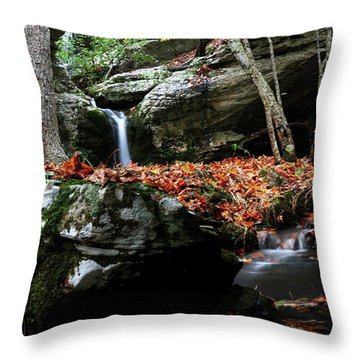 Yellow Cheek Valley Throw Pillow