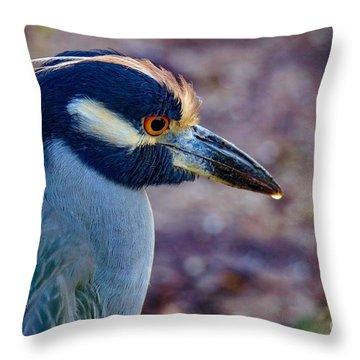 Yellow-crowned Night Heron Throw Pillow