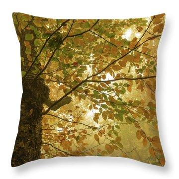 Yellow Fall Leaves - Blue Ridge Parkway Throw Pillow