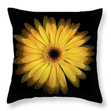 Throw Pillow featuring the photograph Yellow Gerbera Daisy Repetitions by Bill Swartwout Fine Art Photography