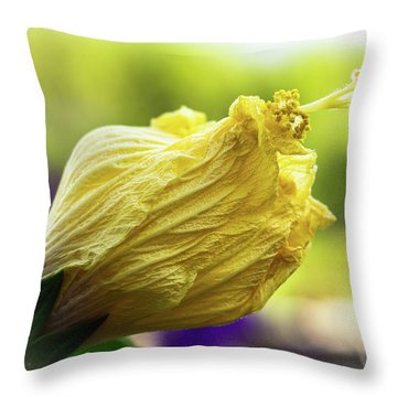 Yellow Mature Hibiscus  Throw Pillow