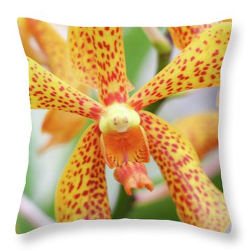 Yellow Spotted Spider Orchids Throw Pillow