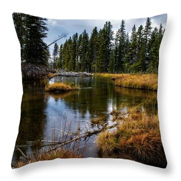 Throw Pillow featuring the photograph Yellowstone National Park by Scott Read